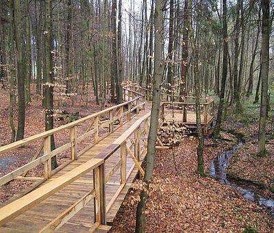 Machen Sie einen Spaziergang zu einem landschaftlichen Kleinod: die Kalksinterterassen in Dissen am Teutoburger Wald sind einmalig in Niedersachsen.