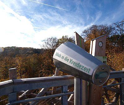 Der Baumwipfelpfad in Bad Iburg im Osnabrücker Land schärft die Sinne für die Besonderheiten des Lebensraumes Wald und für die erdgeschichtlichen Zusammenhänge.