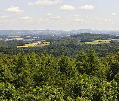 Ausblick vom Aussichtsturm Dissen am Teutoburger Wald